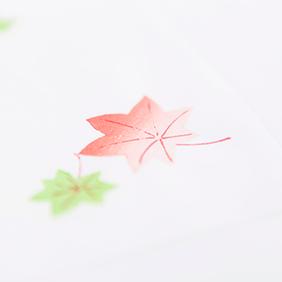 もみじ-季節と共に移り変わる姿