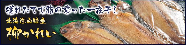 獲れたてで脂の乗った一夜干し、北海道白糠産の柳がれい