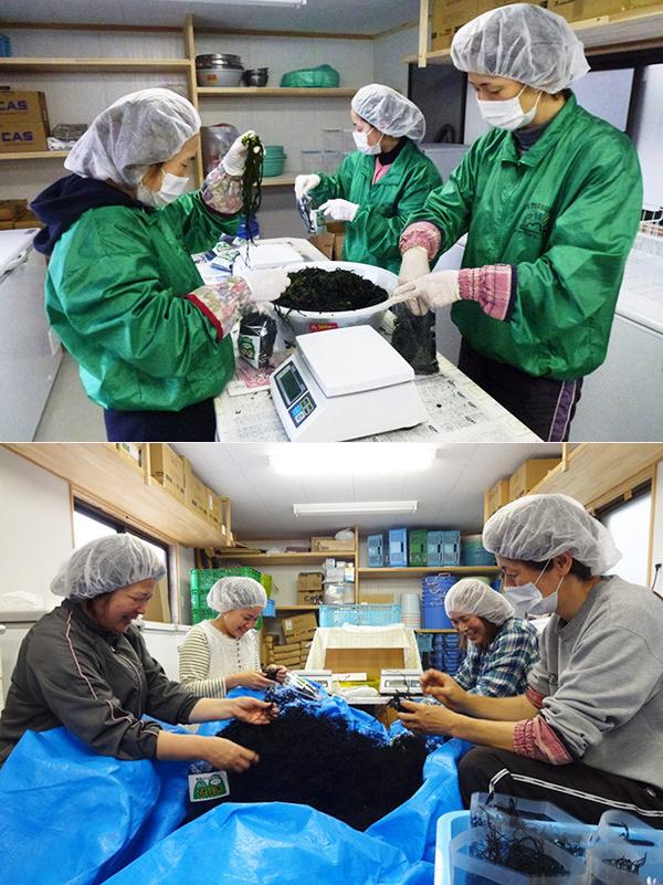 松島水産物加工場