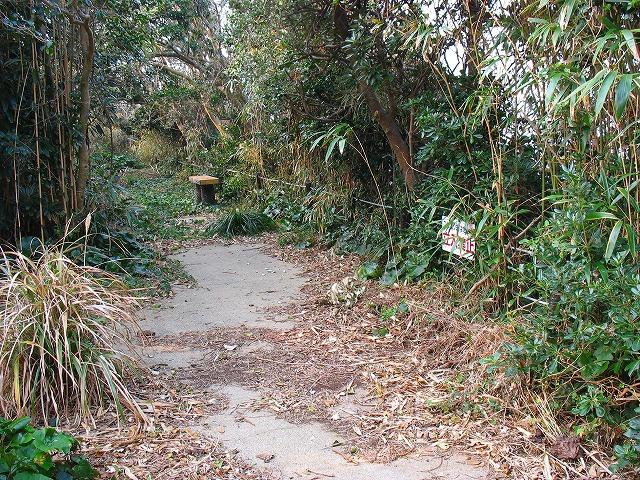 立岩への遊歩道