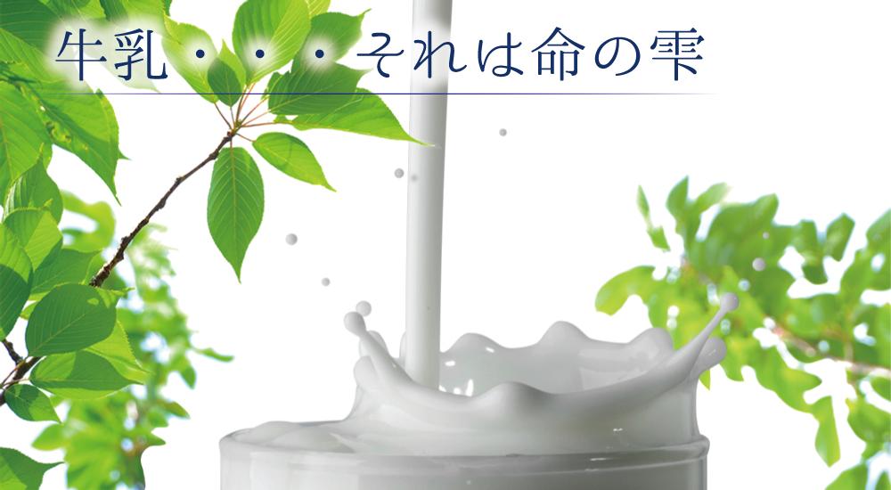 牛乳・・・それは命の雫