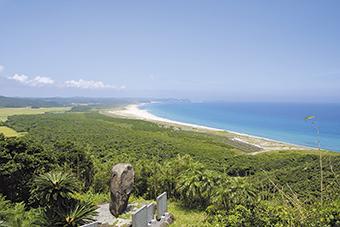 種子島の風景