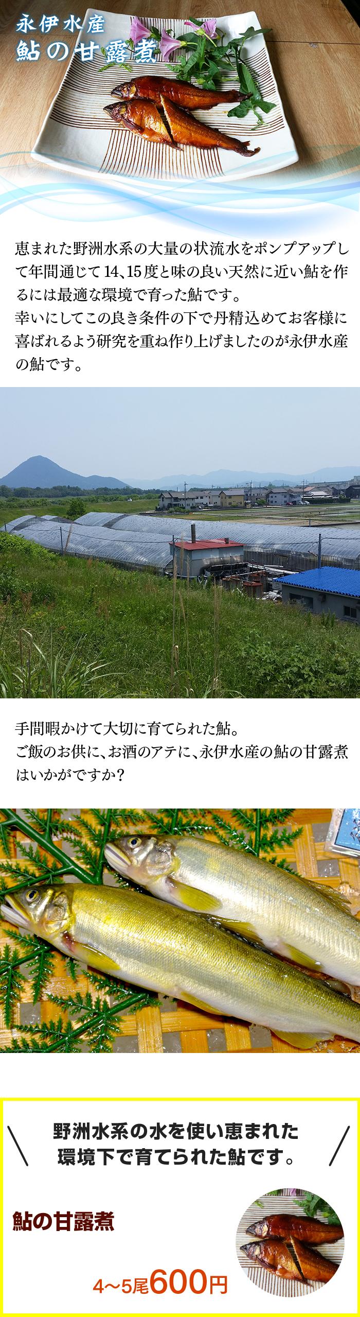 野洲水系の水を使い恵まれた 環境下で育てられた鮎です。