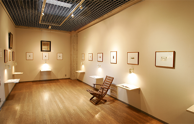 この展示室は『昆虫とあそぼう』の原画です。