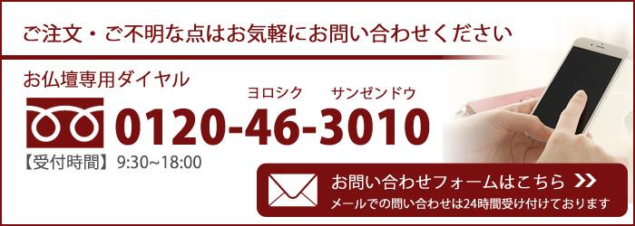 0120463010