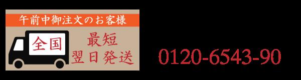 0120-6543-90