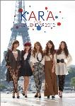 2012年 KARA カレンダー
