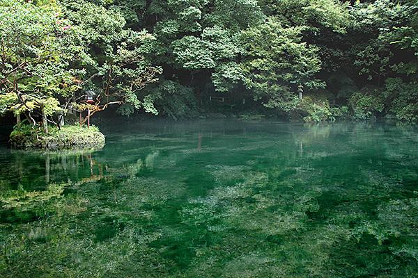 栃木・佐野の名水「出流原弁天池湧水」の伏流水を使用したごまとうふ