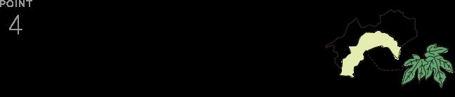 4C PREMIUM FACE PACK SHEET POINT4
