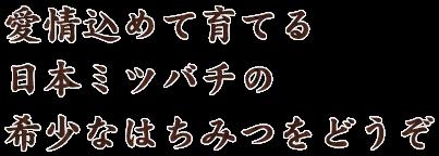 愛情込めて育てる日本みつばち