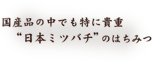 """国産品の中でも特に貴重""""日本ミツバチ""""のはちみつ"""