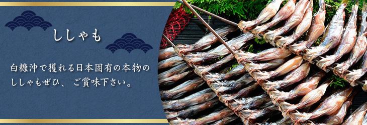 白糠沖で獲れる日本固有の本物のししゃもぜひ、ご賞味下さい。