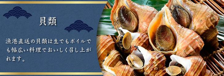 漁港直送の貝類は生でもボイルでも幅広い料理でおいしく召し上がれます。