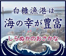 白糠漁協の魚種一覧