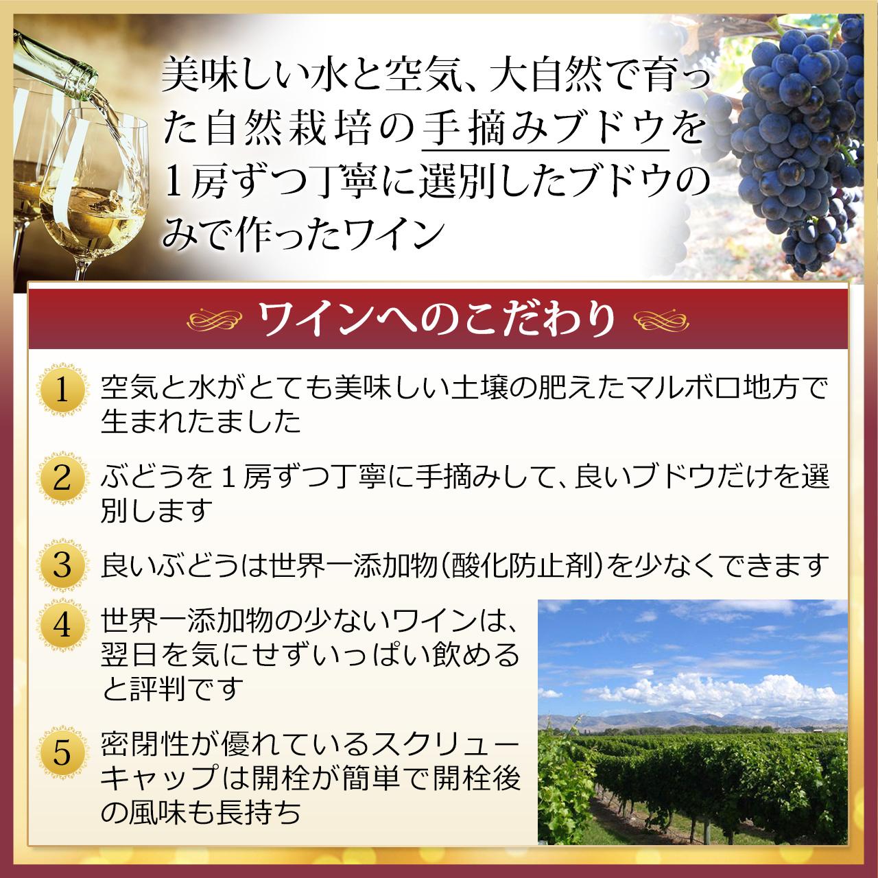 【ワインへのこだわり】美味しい水と空気、大自然で育った自然栽培の手摘みブドウを1房ずつ丁寧に選別したブドウのみで作ったワイン