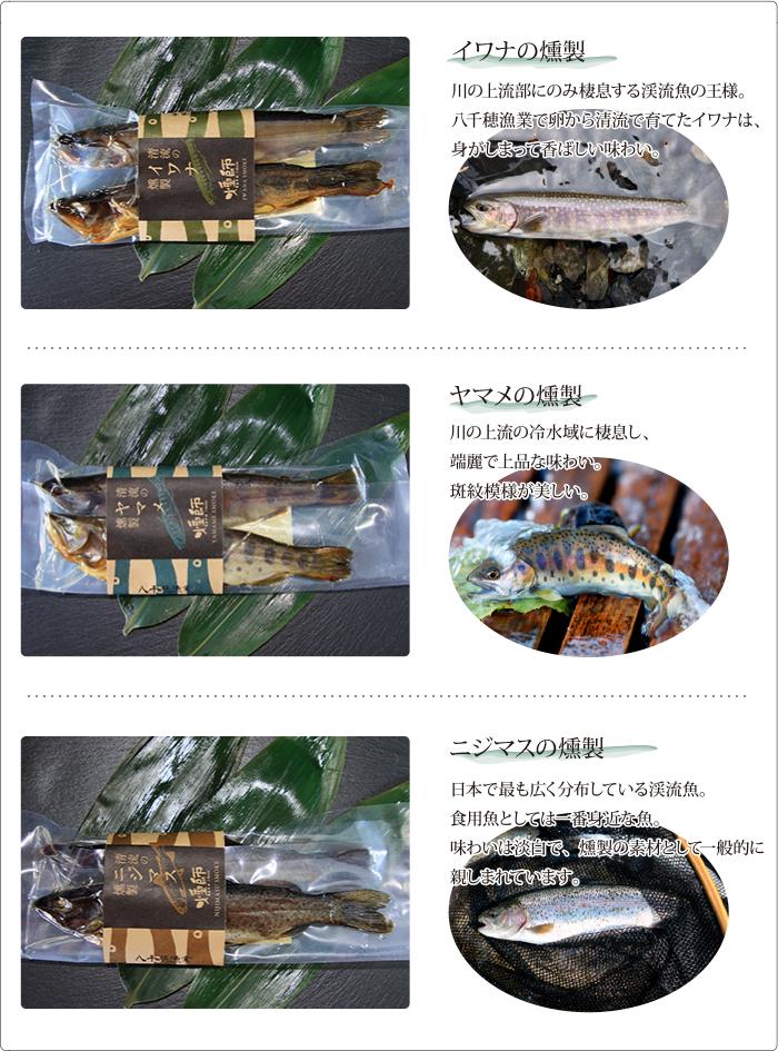 東信州 佐久穂町 清流のイワナ・ヤマメ・ニジマスの燻製