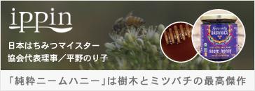 ぐるなびippin 日本はちみつマイスター協会代表理事 平野のり子