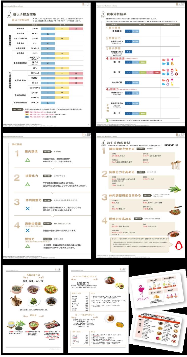 遺伝子検査結果・食事分析結果・外食ブック・持ち歩きカード