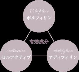 3つの有効成分 ボルフィリン・セルアクティブ・アディフィリン