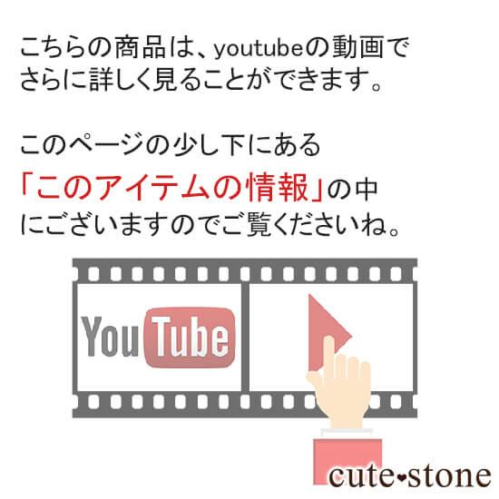 youtube動画も見ることができます