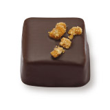 プラリネ・ノワゼット PRALINE HAZELNUT COATED WITH DARK CHOCOLATE