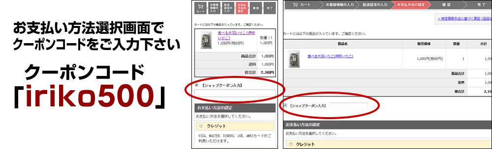 お支払い方法選択画面でクーポンコード「iriko500」をご入力下さい