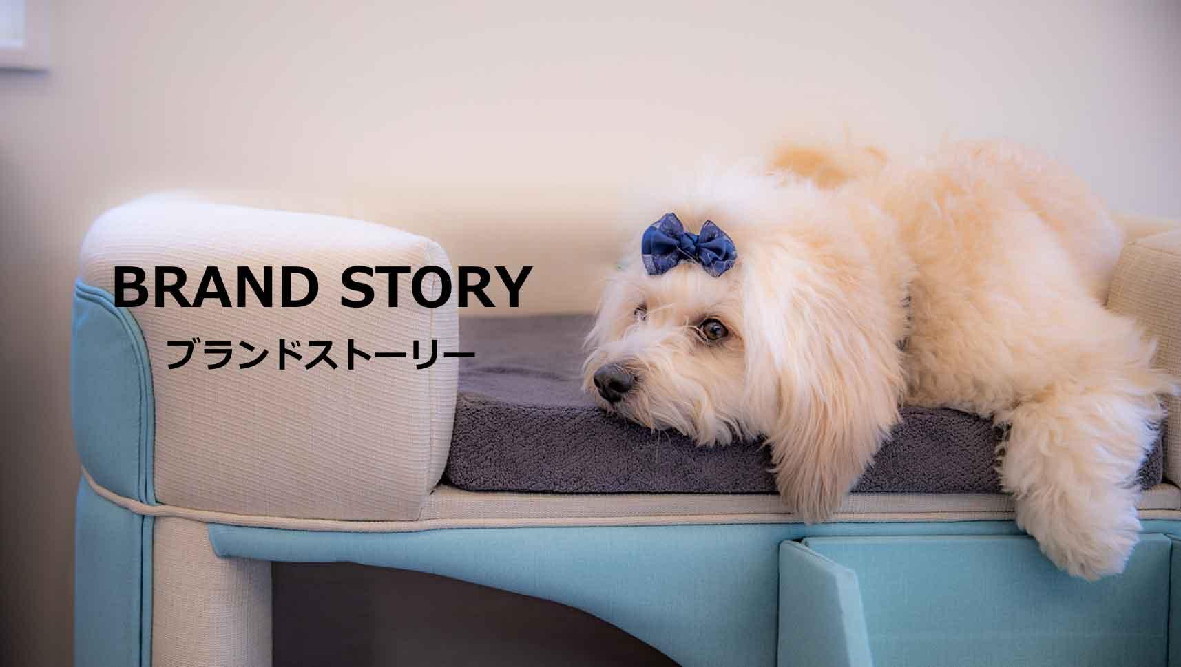 ブランドストーリー