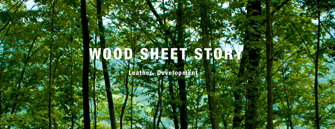 WOOD SHEET STORY
