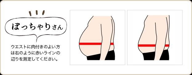 ぽっちゃりさんは、右のように赤いラインの辺りを測定してください。