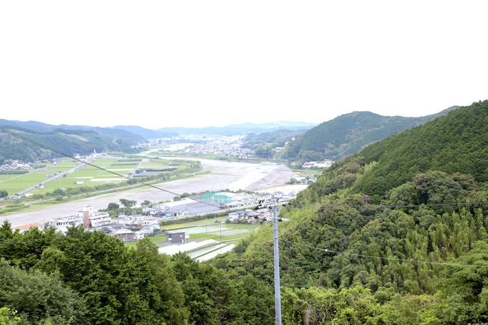 富田川を見下ろす梅畑