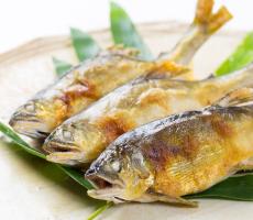 琵琶湖の魚を探す