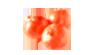玉ねぎの皮パウダー