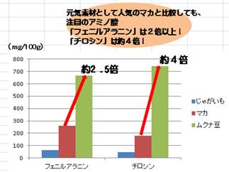 ムクナ成分グラフ