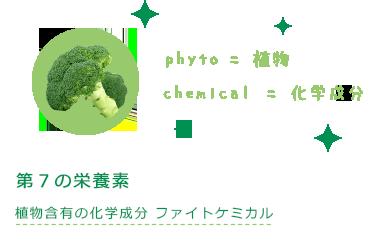 第7の栄養素