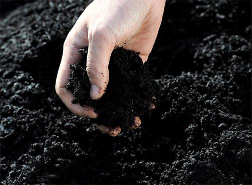 数種類の有機物を入れたこだわり堆肥
