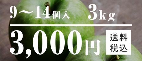 9~14個入 3kg 3,000円 りんご