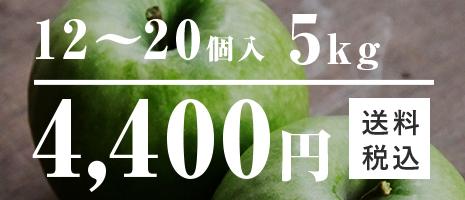 12~20個入 5kg 4,400円 りんご