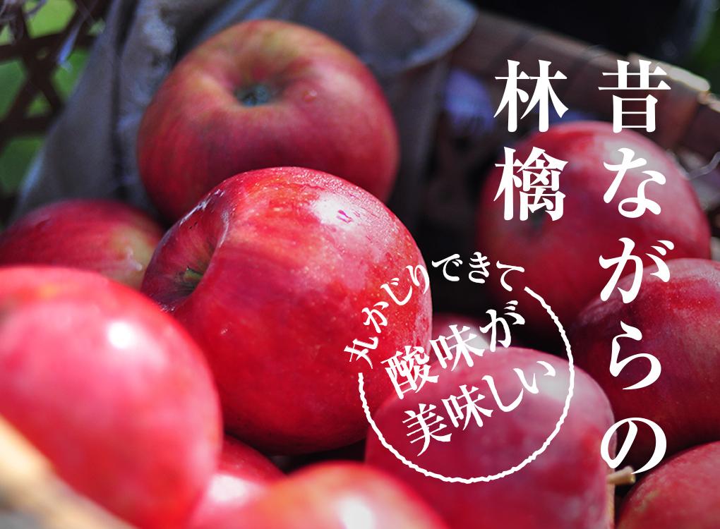 昔ながらの林檎 丸かじりできて酸味が美味しい りんご