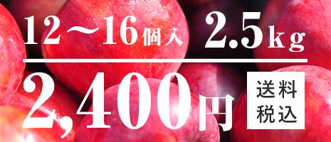 りんご 12~16個入 2.5kg
