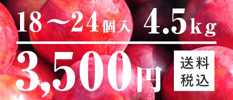 りんご 18~24個入 4.5kg