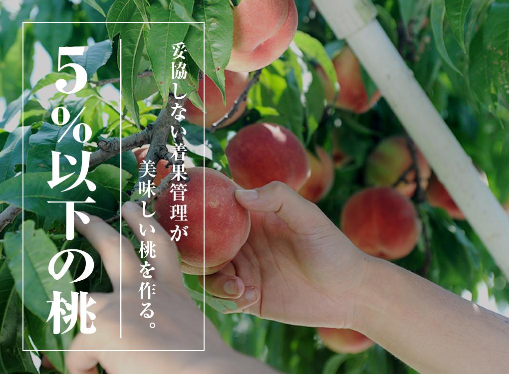 5%以下の桃|妥協しない着果管理が美味しい桃を作る。