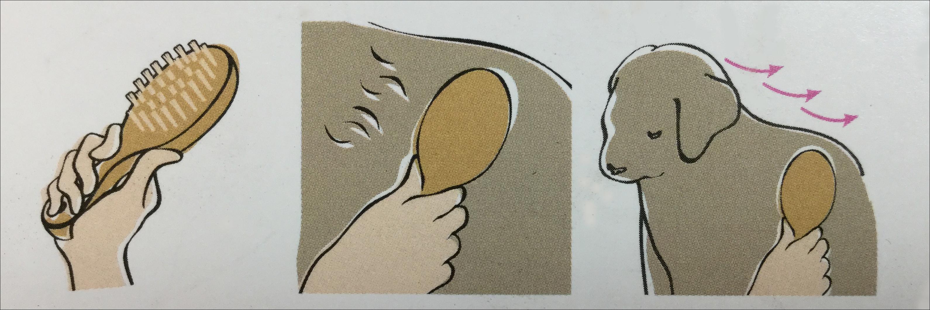 豚毛ブラシ