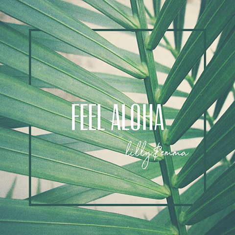 FEEL AHOLA Series