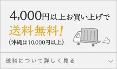 4,000円以上お買い上げで送料無料!