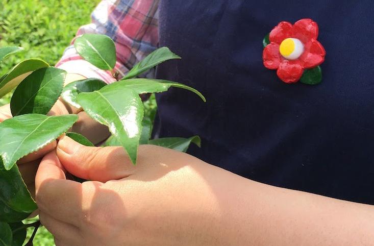 手元の綺麗な椿葉と胸の椿ブローチ