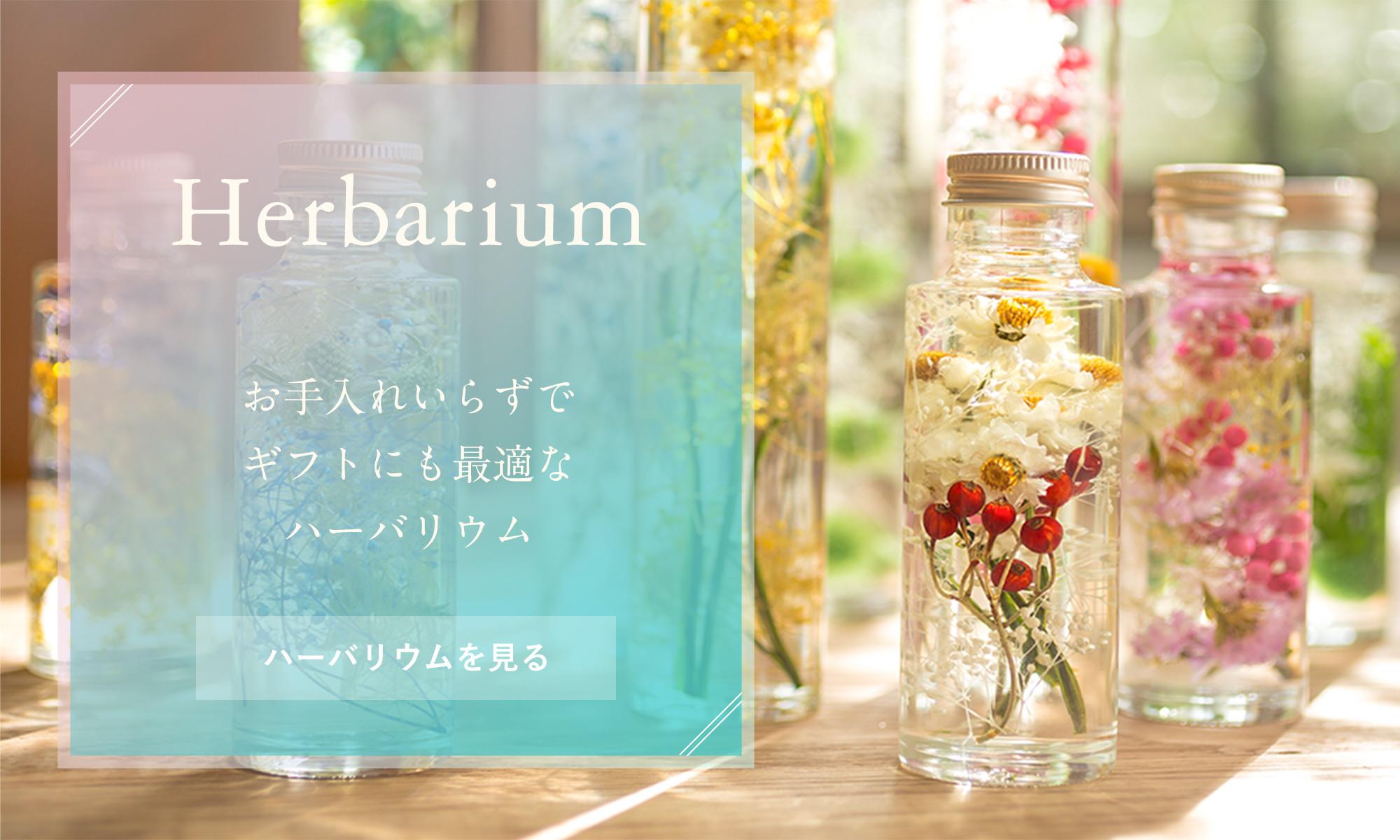 Herbarium 2018.10〜人気のハーバリウムが入荷しました!お手入れ入れずでギフトにも最適です