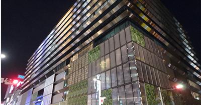 南風農菓舎 GINZA SIX店