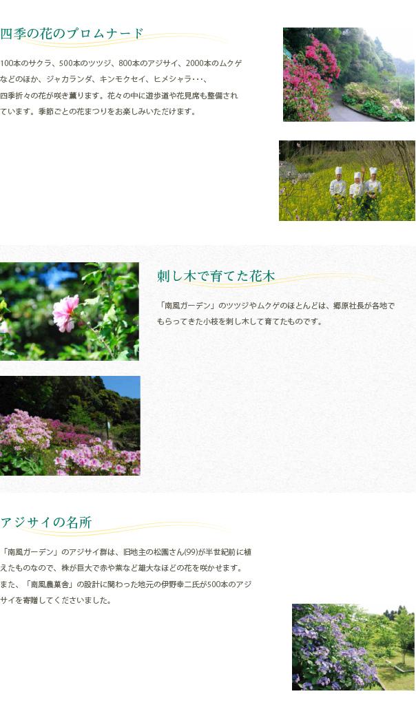 四季の花のプロムナード