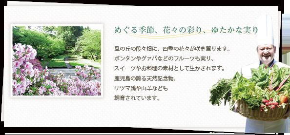 めぐる季節、花々の彩り、ゆたかな実り