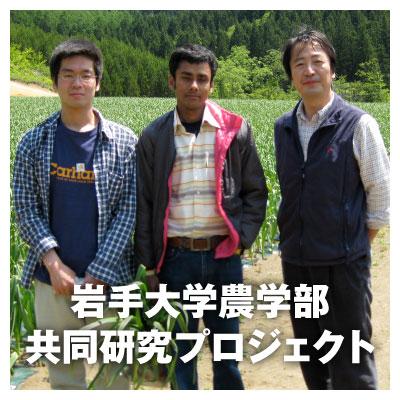 岩手大学農学部×沢田ファーム共同研究プロジェクト